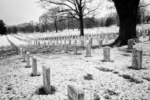 Arlington Cemetery-7901