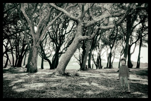 Isaac, Fort Fisher