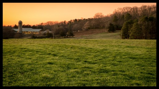 Sunset at Mapleview Farms, Orange County
