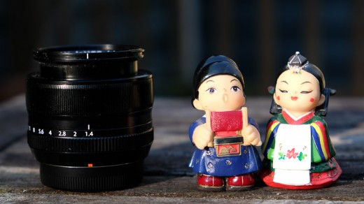 The subjects next to the Fujinon 35mm f/1.4