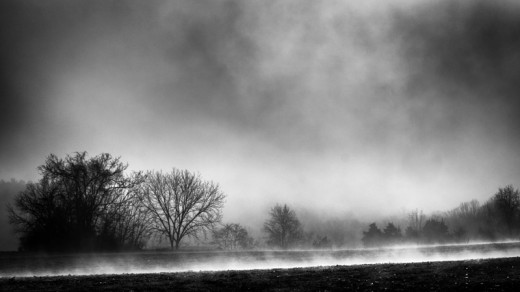 Of Fog and Sun-0155