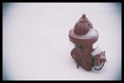 snow daze-3
