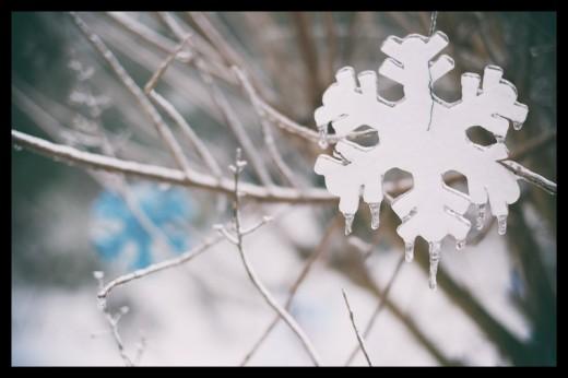 snow daze-4