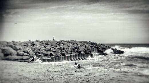 March Beach-10