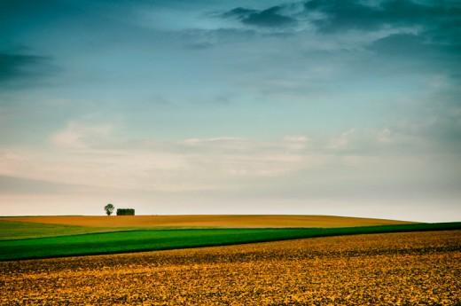Farmland, Bourgogne